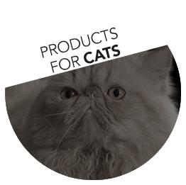 Linha de Alimentação para Gatos
