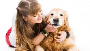 Hipoglicemia canina
