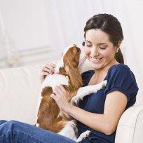 Animais de apartamento: O que fazer para não ficarem estressados?
