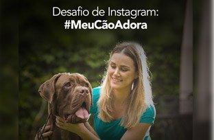 Desafio de Instagram: #MeuCãoAdora