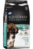 Lhasa Apso - Puppy