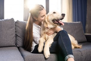 Alimentación para Perros con Anemia