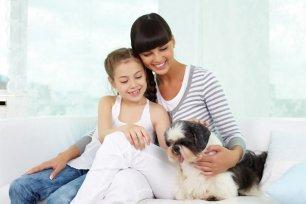 10 atitudes para melhorar o conv�vio com seu cachorro.