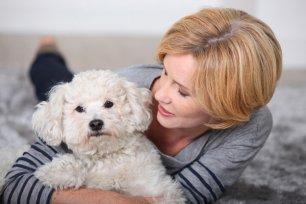 3 motivos pelos quais você deve conversar com seu cão