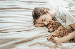 Cuidados pré-operatórios em cirurgia de castração de cachorro