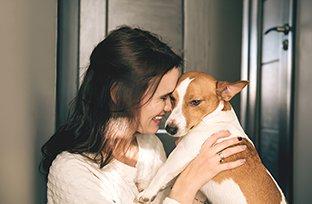 Cuidados pós-operatórios em cirurgia de castração de cachorro